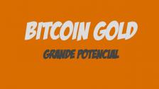 BitCoin Gold é um investimento seguro e confiável